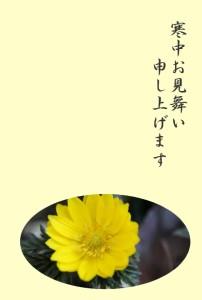 kantyumimai_f